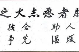 再见@心心之火志愿服务队