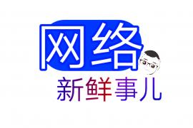 """公众号""""网络新鲜事儿""""上线"""